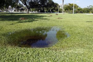 How to Find and Fix Sewer Line Issues Fast